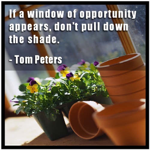 If a window of opportunity appears don't pull down the shade - Tom Peters